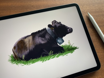 cO_Ow 2 🐄 pankaj juvekar illustration art illustration illustrator ipadproart procreate art procreateapp procreate ipadpro switzerland cow cows