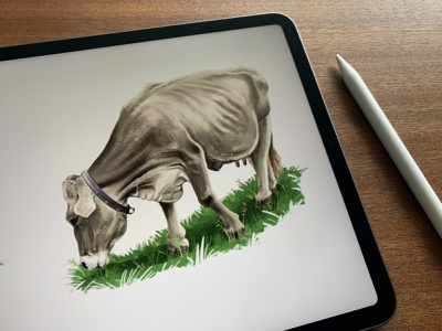 cO_Ow 3 🐄 pankaj juvekar illustration art illustration illustrator procreate app procreate art procreateapp procreate ipadproart ipadpro cow cows