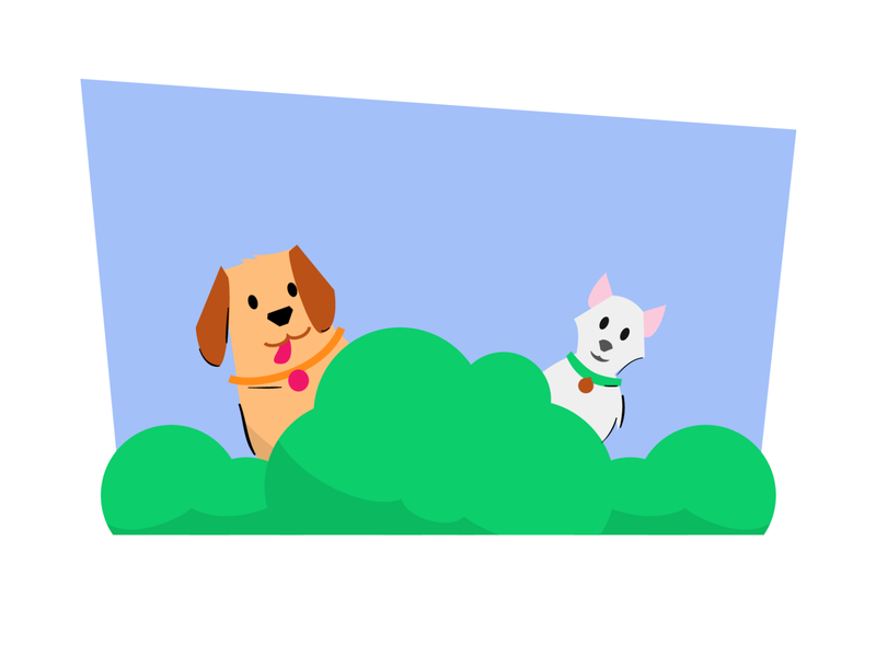 Dog and cat animal dog illustration dogs dog colombia illustration illustrator
