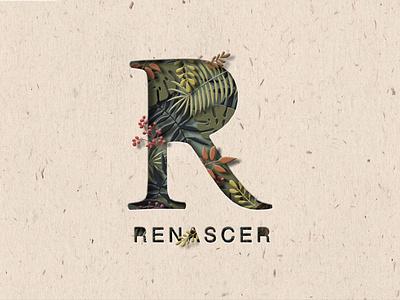Renascer papercraft typography colorful design packaging label design leaf logo illustration