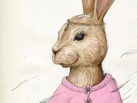 Miss Rabbit - stage 1