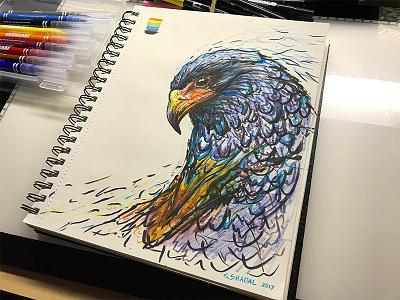 Eagle Color.Sketch 800x600 steven skadal brush pen pencil pen sketchbook bird eagle ink color illustration drawing sketch