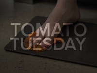 Tomato Tuesday