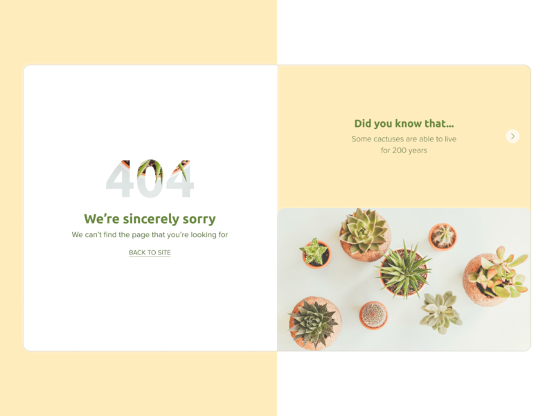 DailyUI 008 404 page plants 404 error page 404 error 404 page 404 dailyui008 dailyuichallenge dailyui