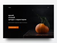 Citrus Store Design store design website design landing page