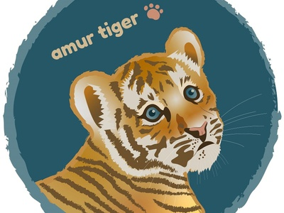 Amur tiger illustration save the earth save animals wild animal wild life whiskers cat illustration animal tiger amur