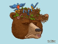 Mr Bear's Nature Hat 2017