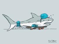 The Shark Skater