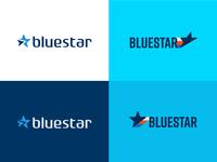 BlueStar Auto Movers Logo Concepts