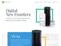 Large digital initiatives