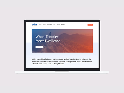 Agility Executive Search uiux html css wordpress marketing content strategy branding website