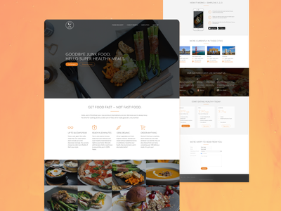 Visual Design Food Delivery Website web app design graphic design ux ui