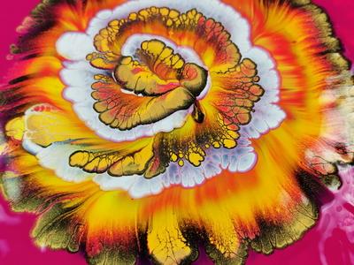 (274) Wild series #1 / Yellows on magenta background / Spiral re