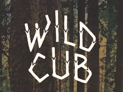 Wild cub dribbble 2