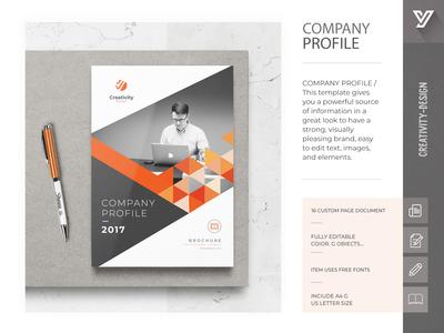 The Company Profile