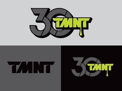 TMNT 30th
