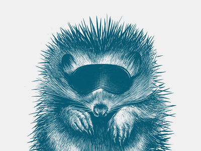 Do Not Disturb the Hedgehog design illustration drawing
