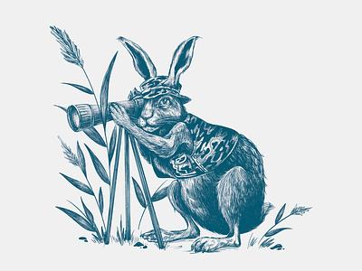 Rabbit spy illustration drawing