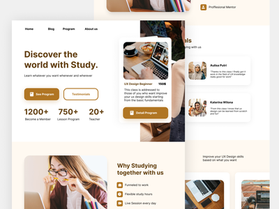 Studied - Education Website Concept design education brown course student learning academic study website ux web minimalist clean ui