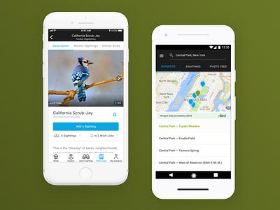 Audubon Mobile App mobile ux ui react native android ios app reference guide birding audubon society audubon
