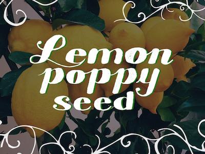 Lemon Poppy Seed illustrator lettering typography hand lettering hand-lettering