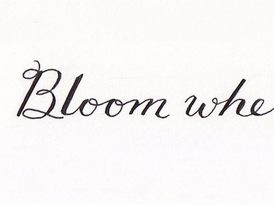 Bloom where you're planted.