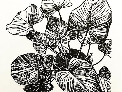 Emerald Gem linocut print indoor plant printmaking print linocut
