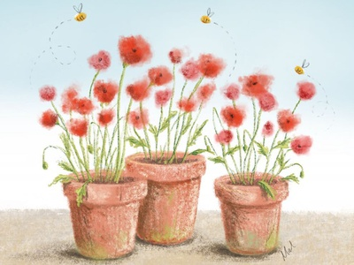 Potted Poppies anzacday garden pots plants procreate digitalillustration illustration digital poppies