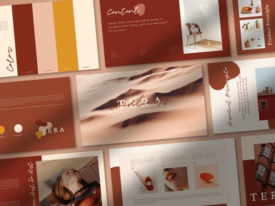 TERA - Brand Guidlines templates logo brand guide brand guidelines powerpoint presentation powerpoint template branding template design