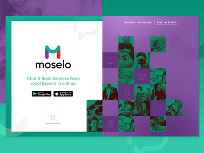 Moselo Homepage experts service website homepage