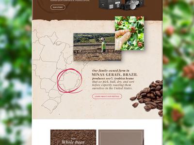 Coffee Website  classic eco artisan gourmet material ui website web espresso coffee