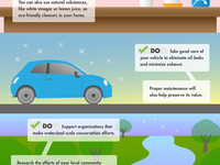 Conservation Infographic