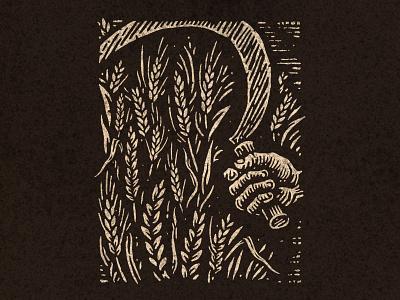 Harvest autumn wheat harvest woodcut illustration