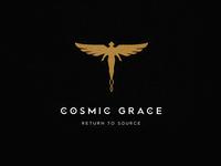 Cosmic grace