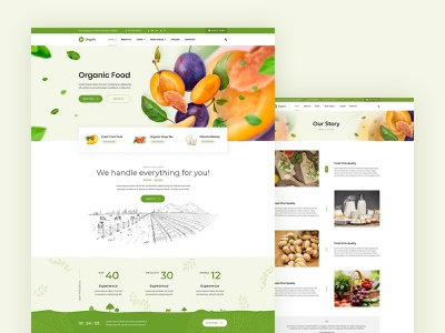 orgafit - website design organic website webdesign ui