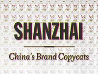 Shanzhai Chinas Brand Copycats