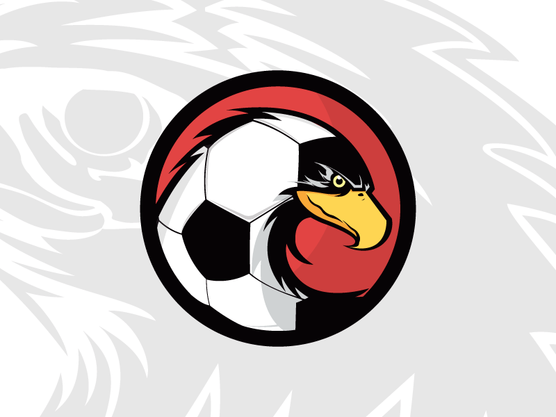 Red&black (logo) behance brandig soccer eagle bird black red football team logo