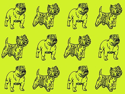 RUFF RIDERS losangeles design creative fun pets dogs pattern