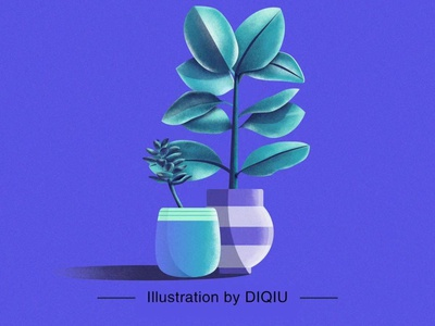 Plant illustration illustration