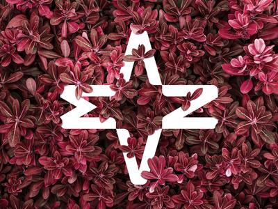 anama Logo Branding