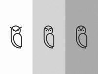 OVO Owl - Concept(s)