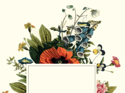 Vintage Botanical Experimenting by Alisa Wismer on Dribbble