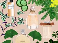 Parfum bottles