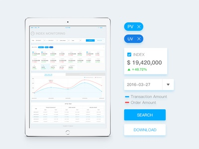 Data Analysis(iPad Pro)