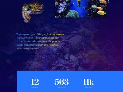 Aquarium Design & Installation   Nautical Theme infinity gradient mash-up aquatic fish wet wonderland aquarium
