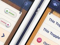 iOS iPhone App Modal Options