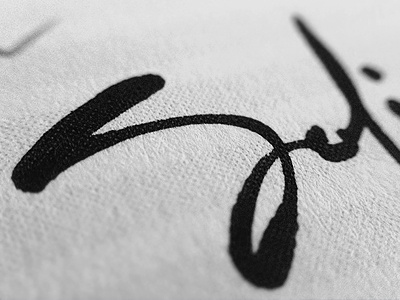 Sofia branding corporate identity logo logo design verg verg advertising matt vergotis design agency lettering custom type signature sofia gold coast australia
