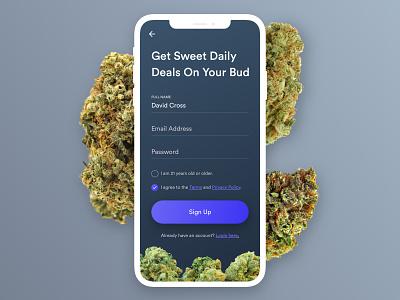 Cannabis Rewards App ios clean mobile app iphone flat ui toronto rewards cannabis