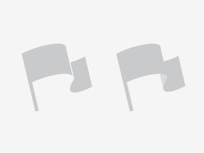 Flag flag illustration t-shirt nation country illustrator shades of grey