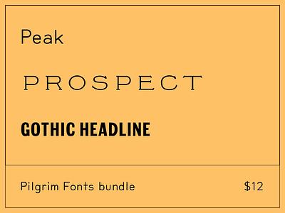 Summer Sale at Pilgrim Fonts type fonts sale